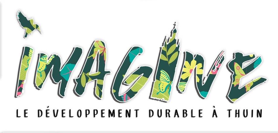 Logo IMAGINE DD THUIN def